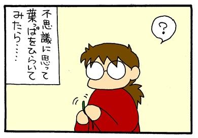 麦わらぼうし-crop02