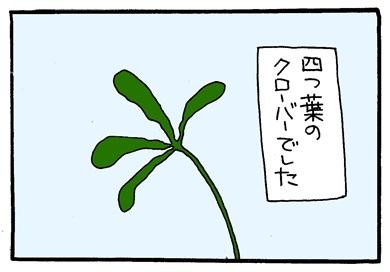 麦わらぼうし-crop03