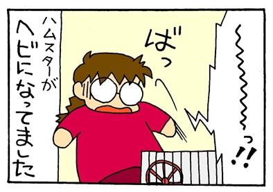 ハムスターと母ちゃん-crop05