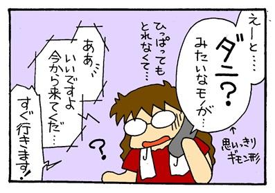 マダニ2-crop03