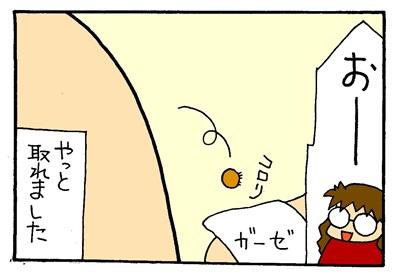 マダニ2-crop06