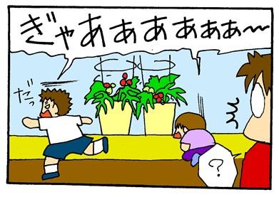 トマト大好き-crop02
