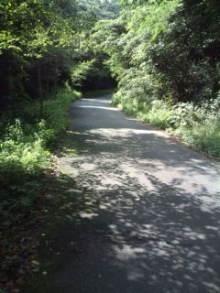 自転車で日本一周を目論むオヤジ-20100630091239.jpg