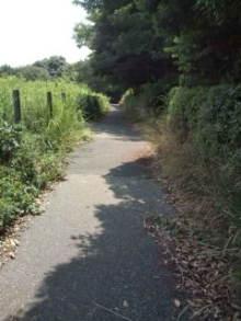 自転車で日本一周を目論むオヤジ(現在、走行中です)-20100726105126.jpg