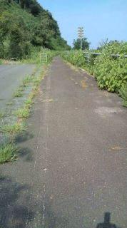 自転車で日本一周を目論むオヤジ(現在、走行中です)-20100906091144.jpg