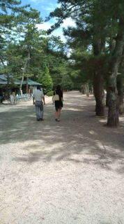 自転車で日本一周を目論むオヤジ(現在、走行中です)-20100913113922.jpg