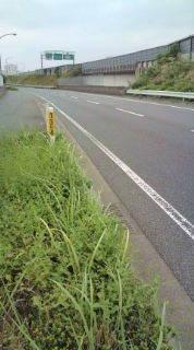 自転車で日本一周を目論むオヤジ(現在、走行中です)-20101021121102.jpg