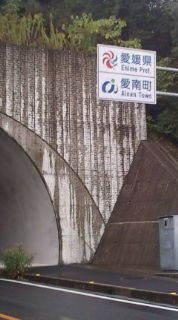 自転車で日本一周を目論むオヤジ(現在、走行中です)-20101107090608.jpg