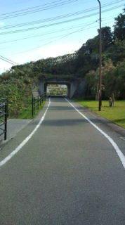 自転車で日本一周を目論むオヤジ(現在、走行中です)-20101110130713.jpg