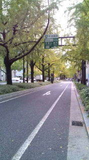 自転車で日本一周を目論むオヤジ(現在、走行中です)-20101115115328.jpg