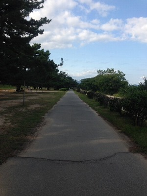 武庫川サイクリングロード(1)