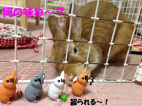 IMG_7936.うさぎガチャ