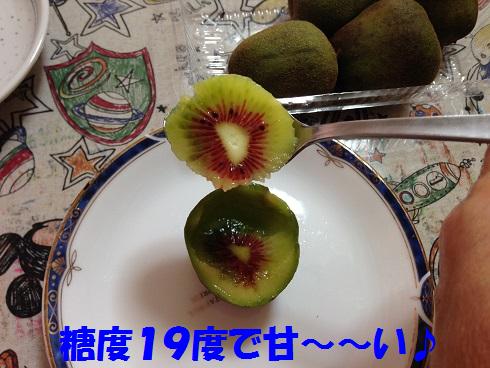 IMG_7964.キウイ