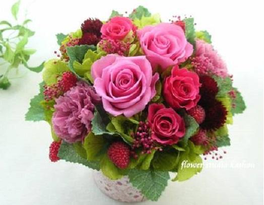 green_rose_garden-img600x450-1376995529div5fw88630.jpg