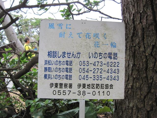 伊豆 021