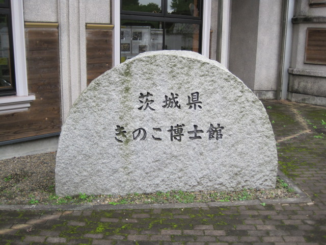 横浜 134