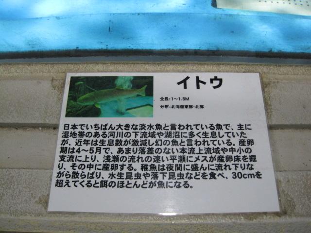 横浜 151