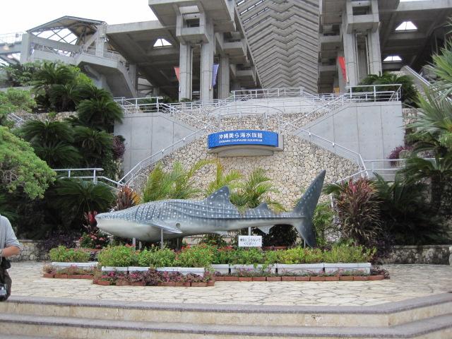 沖縄 189