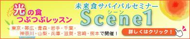 scene1_m_391x80.jpg