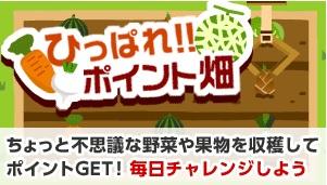 ECナビ_ゲーム_ポイント畑