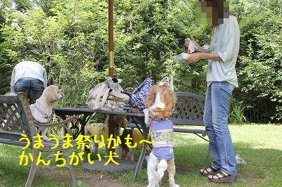 軽井沢オフ会 048