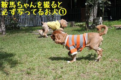 軽井沢オフ会 051
