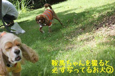 軽井沢オフ会 054