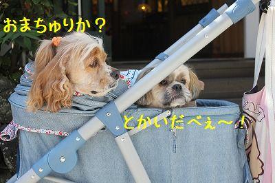 軽井沢オフ会2 014