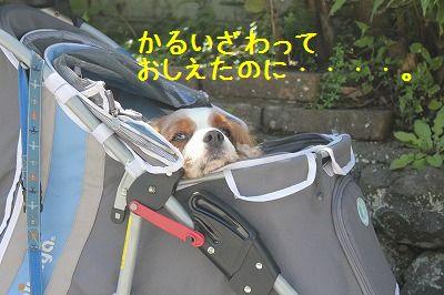 軽井沢オフ会2 016