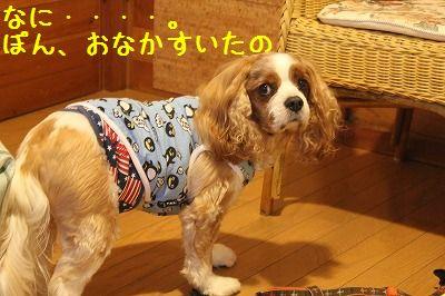 軽井沢オフ会3 001