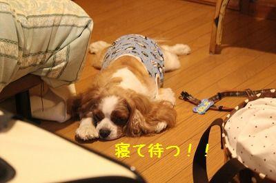軽井沢オフ会3 004
