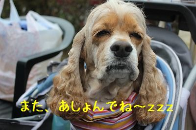 軽井沢オフ会3 066