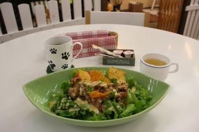k7s dog cafe1-2