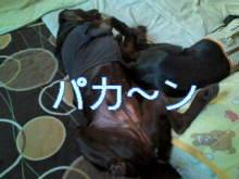 犬バカ日誌 -F1011481.jpg
