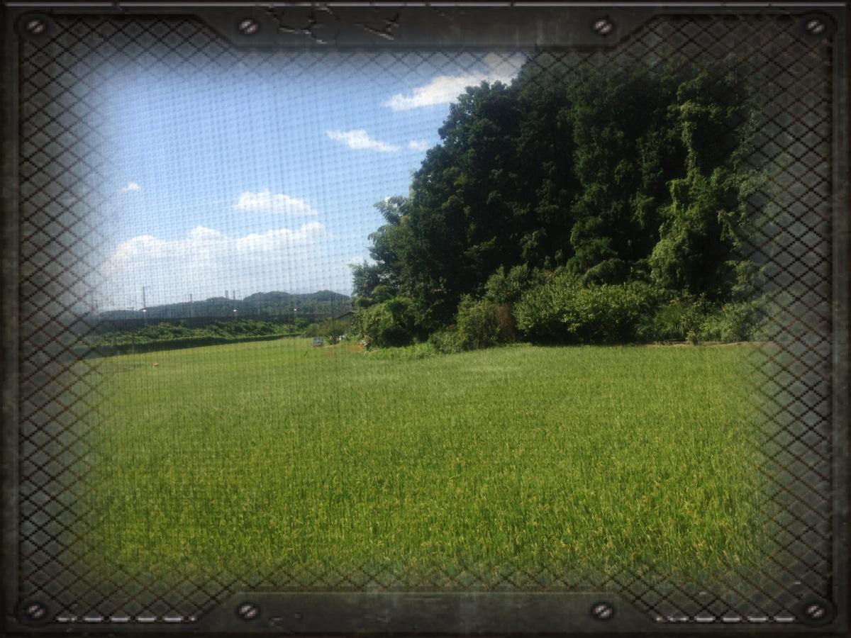 20130918.jpg