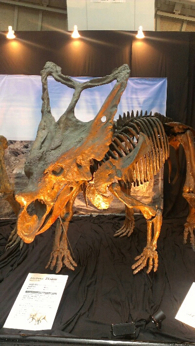 OssAの生き物飼育室 世界大恐竜...