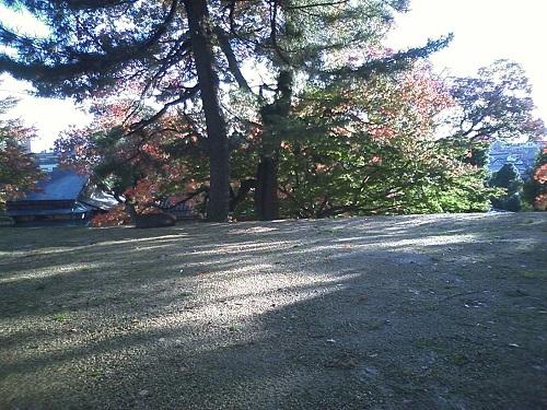 興福寺の秋