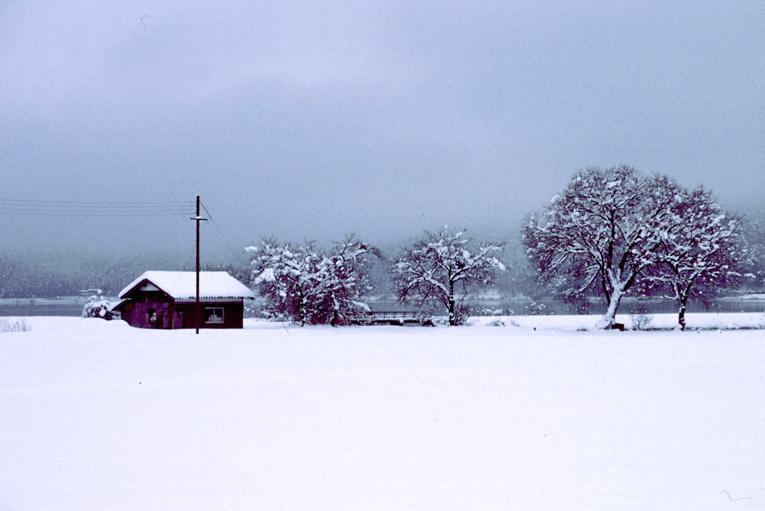雪の余呉湖07