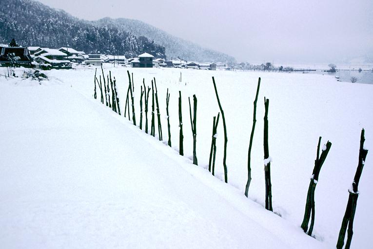 雪の余呉湖02