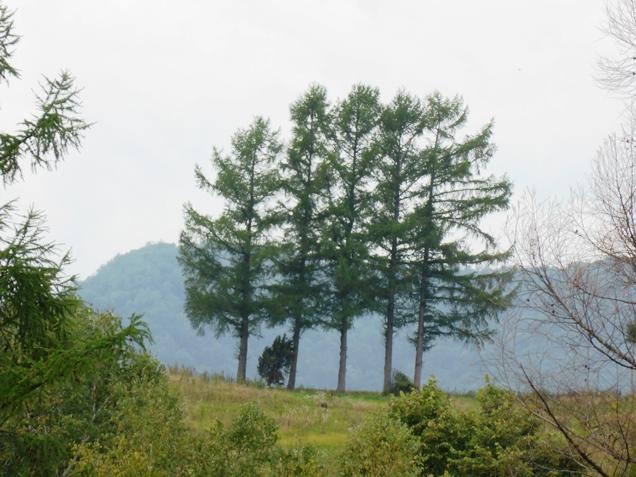 北海道2013・9 ・18~22 (68)