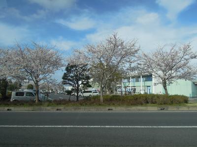 P Sanpo Chiba 18