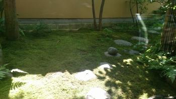 老松 庭1