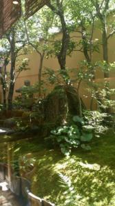 老松 庭2