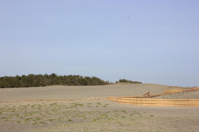 nakatajima1.jpg