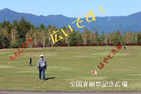 fc2_2013-10-13_23-45-23-521.jpg