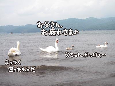 IMG_7206.jpg
