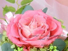rosemona1367bb.jpg