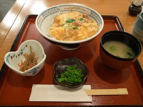 matsuzakayalast12.jpg