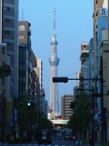 miyakohachi10.jpg