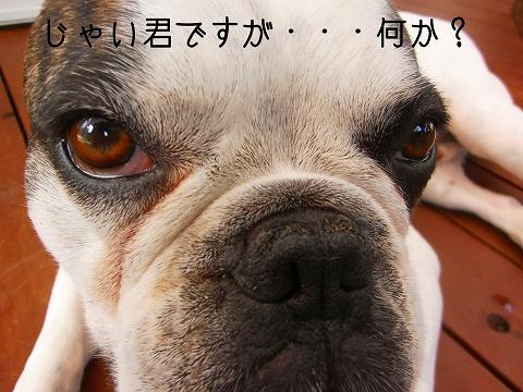 PICT0112085.jpg